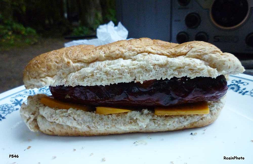 P1000546-hot-dog