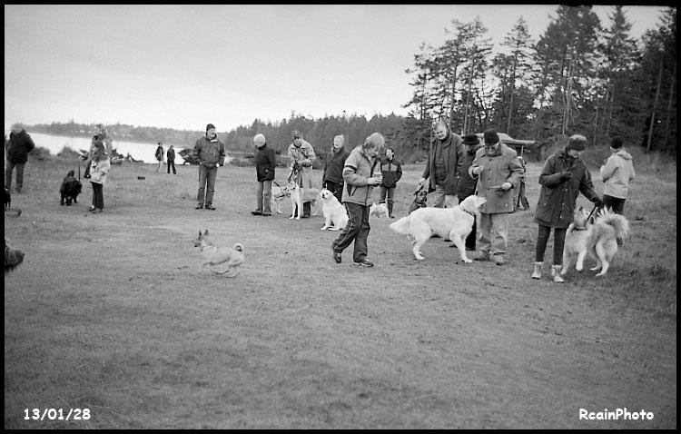 130128-dog_show