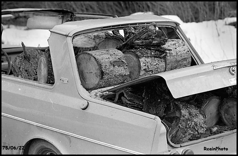 750622-gathering-wood