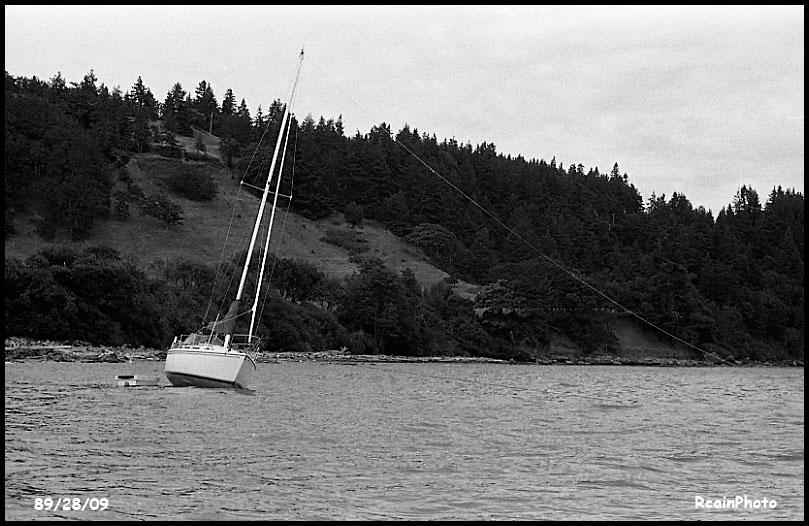 892809-sailboat