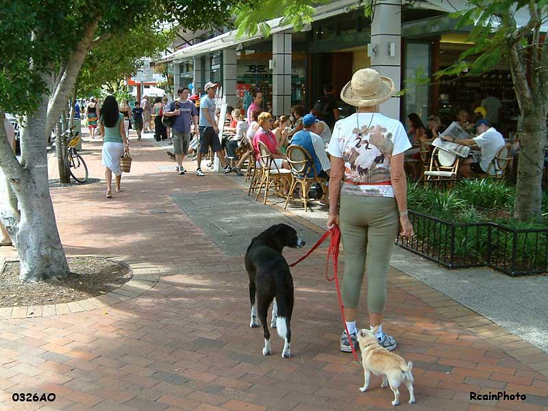 aussie2005_0326AO-dog-person